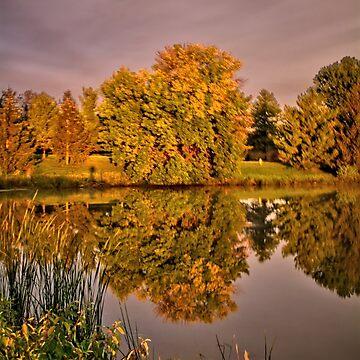 Wilder Autumn by LynyrdSky
