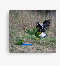 Don't mess with me Canvas Print