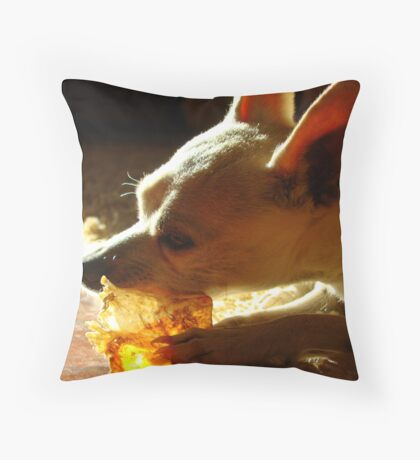 Lil' Bit Is A Happy Guy! Throw Pillow