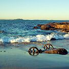 Waterscape: Windang Island Bogey wheels II by Vanessa Pike-Russell