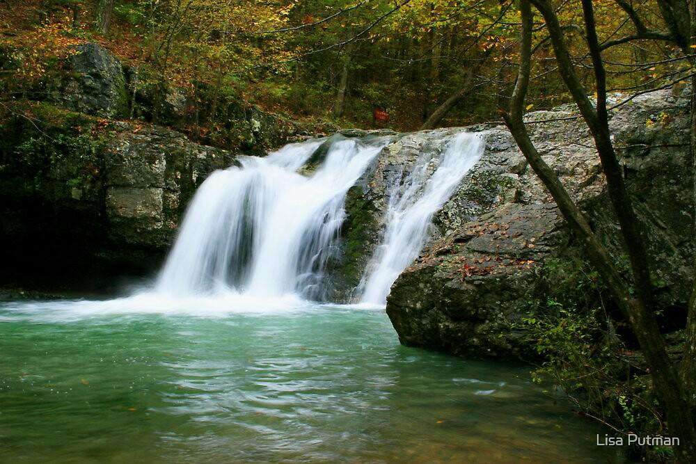 Falls Creek Falls by Lisa Putman