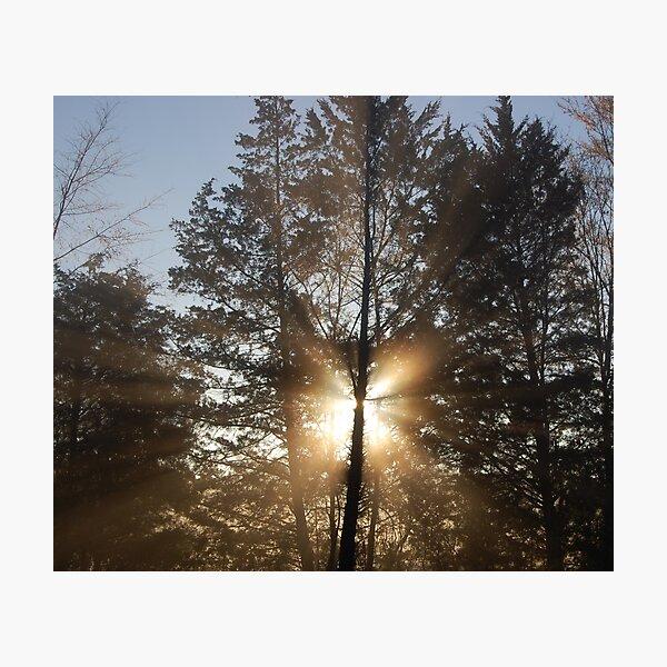 Good morning, sunshine! Photographic Print