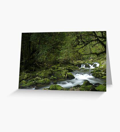 Riwaka River, Tasman bay, New Zealand Greeting Card