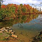 Autumn Lake by Ray4cam