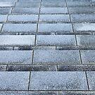 Steps #1 by J J  Everson