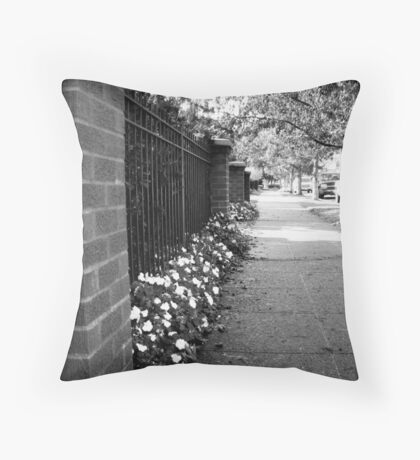 In Front of the House Throw Pillow