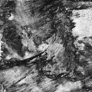 black white gray paint in monotype technique, abstract texture Imitation marble, granite.  by EkaterinaP