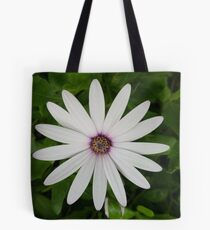 Osteospernum Flower Tote Bag