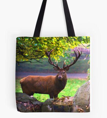 Stag #1   (Red Deer) Tote Bag