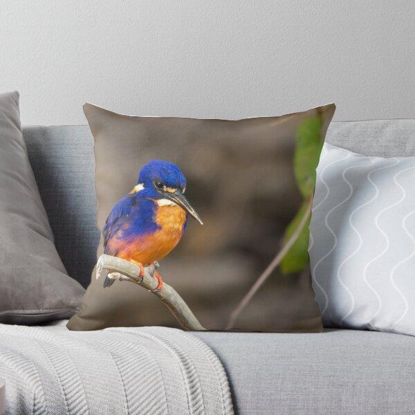 Azure Kingfisher, Kakadu National Park Throw Pillow