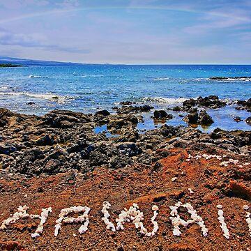 Hawaii by djphoto