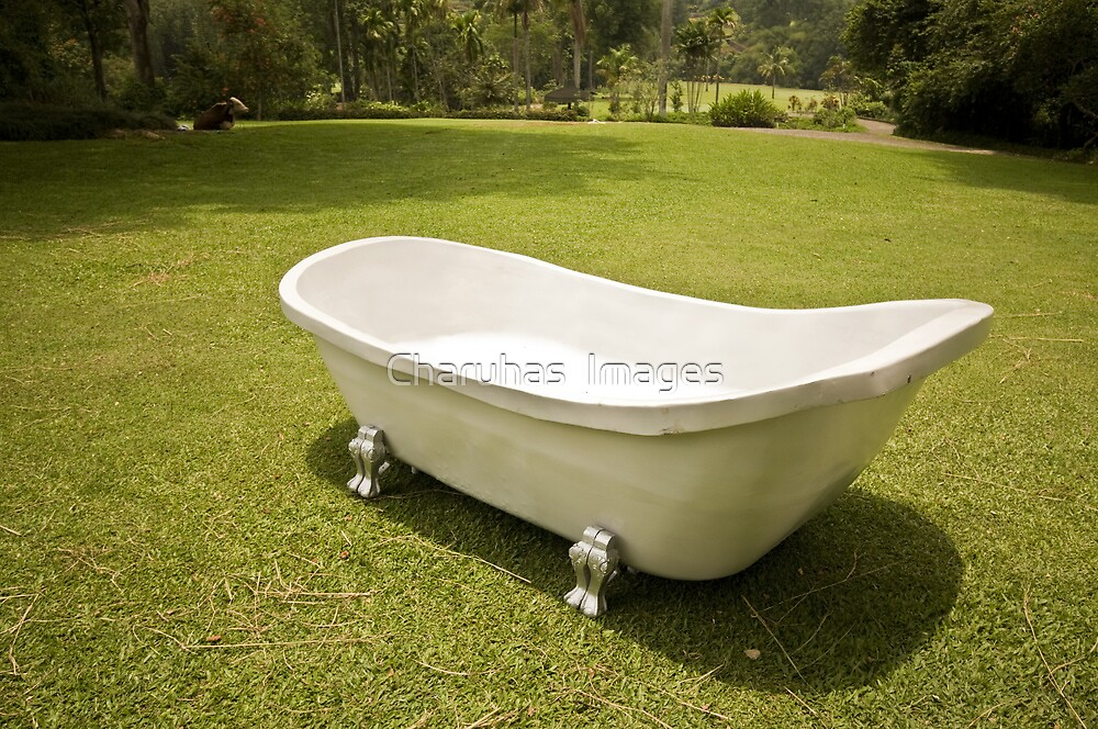 The Tub by Charuhas  Images