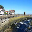 Lynmouth, Devon, England von trish725