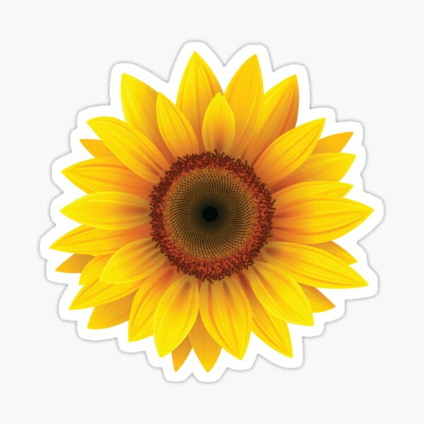 Cool Sunflower Sticker