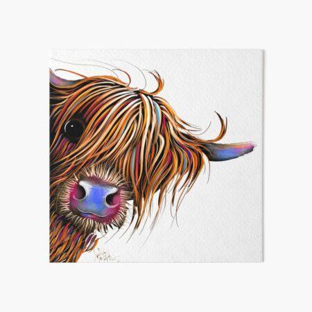 HiGHLaND CoW PRiNT SCoTTiSH 'SuGaR LUMP' VON SHiRLEY MacARTHuR Galeriedruck
