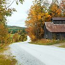 Country Road by John Rivera