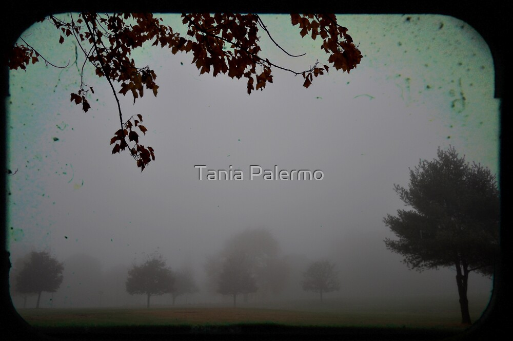 the trees held council by Tania Palermo
