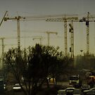 Cranes in foggy (2) by Antanas