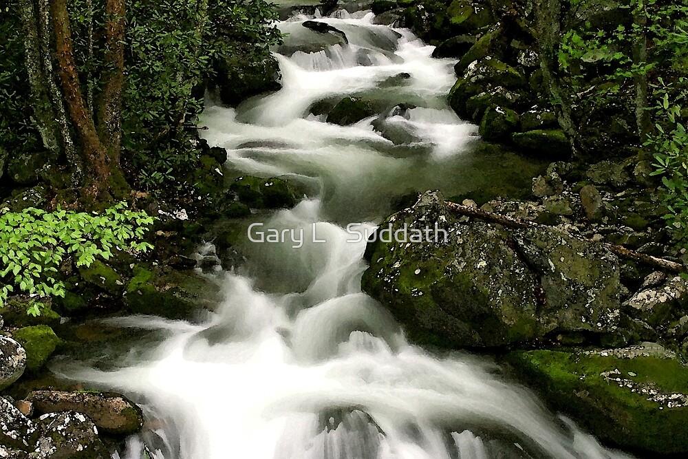 Smoky Mountain Stream by Gary L   Suddath