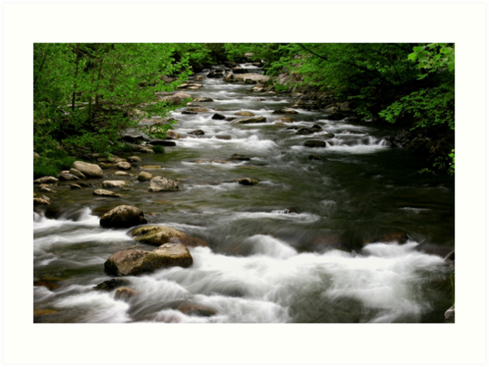 Middle Prong Little River  by Gary L   Suddath
