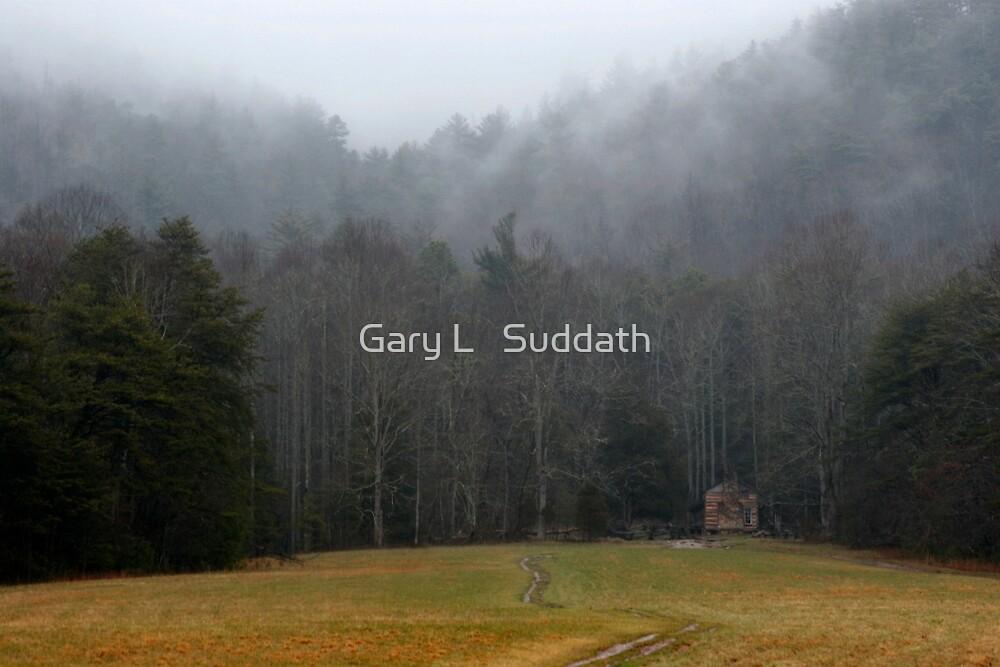 Solitude by Gary L   Suddath