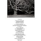 The White Oak Poem by Wayne King