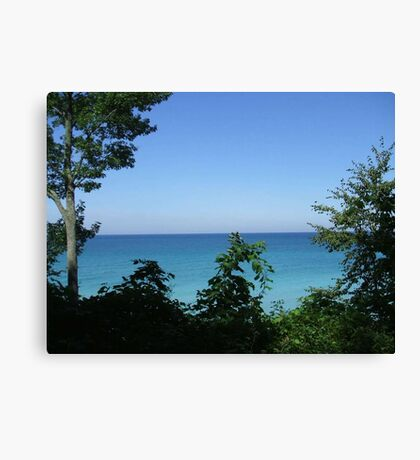Lake Michigan Canvas Print