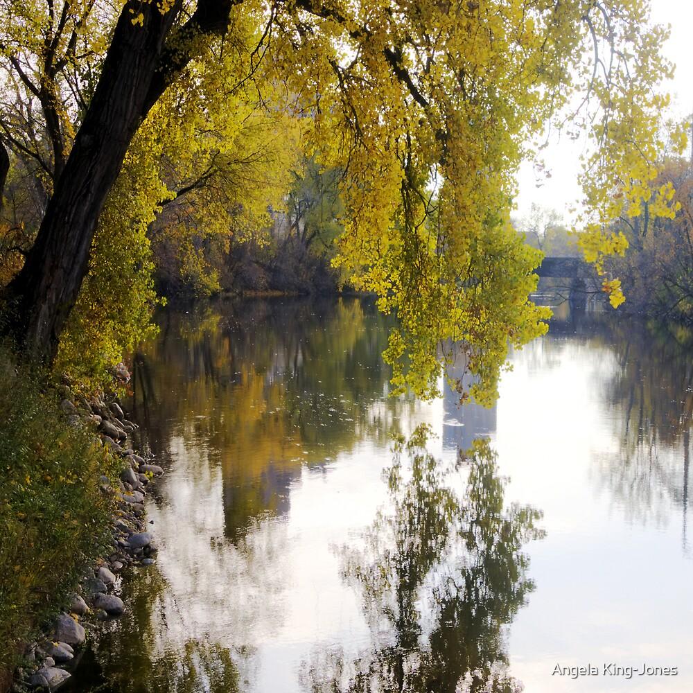 Colors over water's edge by Angela King-Jones