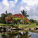 PlayaCar Golf Course, Riveria Maya by Dave Nielsen