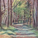 In the Woods by Carolyn Bishop