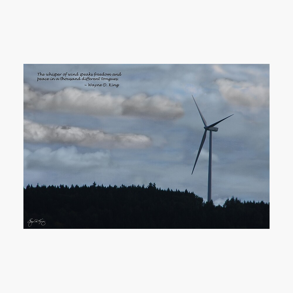 The Whisper of Wind Speaks Freedom Photographic Print