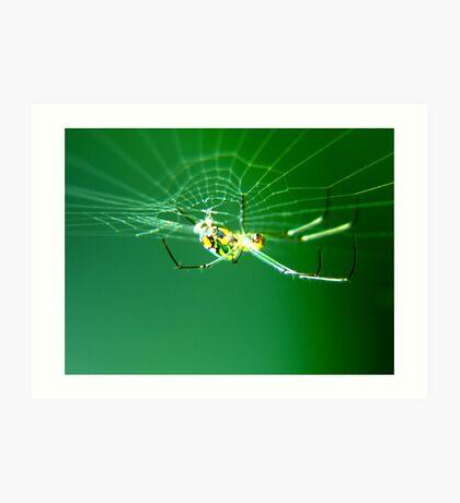 Tiny Neon Spider Art Print