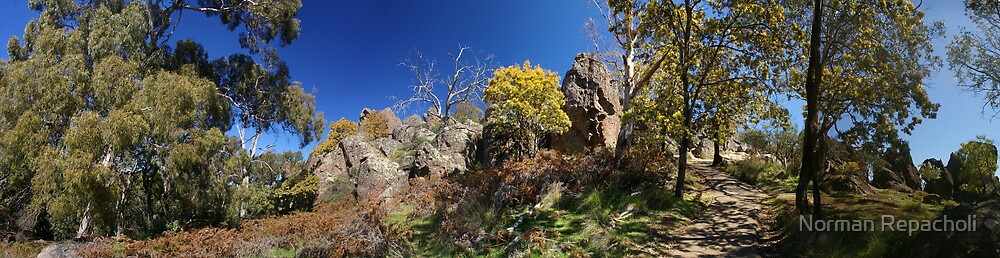 Panorama at Hanging Rock by Norman Repacholi