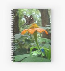 Long-tailed Skipper on Mexican Sunflower Spiral Notebook