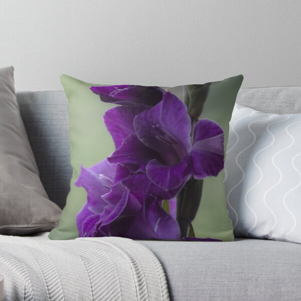 """How does velvet feel like? ... ♡‿♡....""""Dancing With Tears In My Eyes"""" . by Andrew (Brown Sugar) . Gladiolus Blue Isle  ! Views (848)   Super Ok! Fresh !!! Featured ! Throw Pillow"""