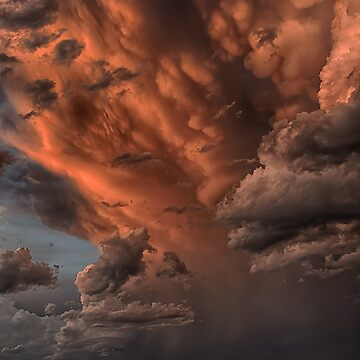 Tropical storm by andreisky