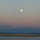 Moon lit lake and beach by lulisa