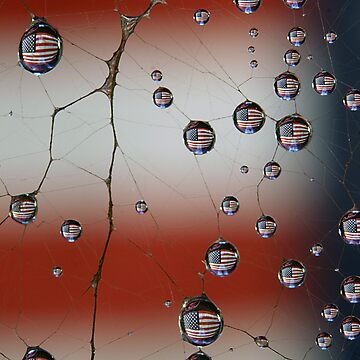 Web of Patriotism by DonCox