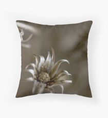 Old Age... Throw Pillow