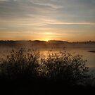 Wake the Sun by heathernicole00