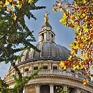 London, St. Paul's Cathedral by Adri  Padmos