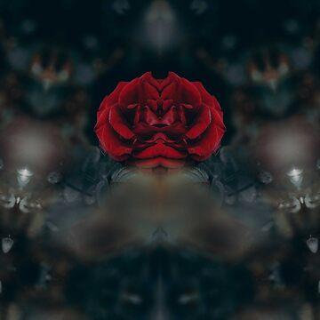 RED ROSE by EDDESIGNFORFUN