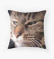 Momma Kitty Throw Pillow