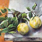 Citrus by JolanteHesse