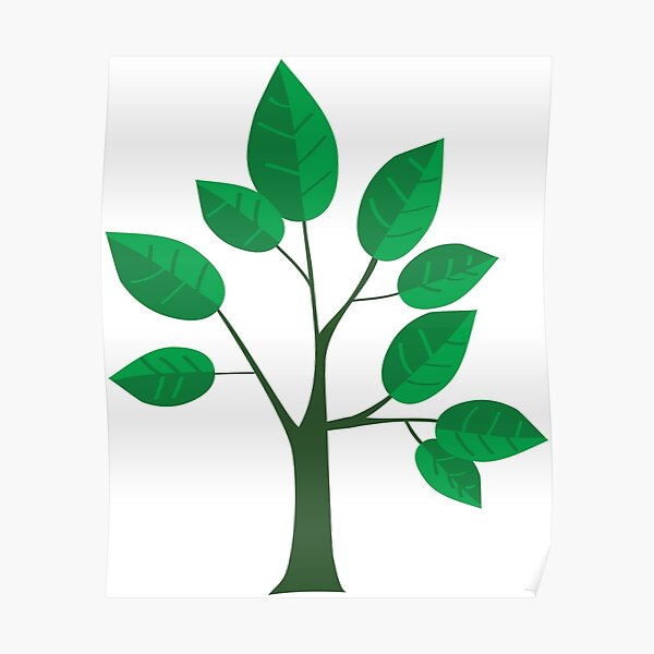 sapling young tree Poster