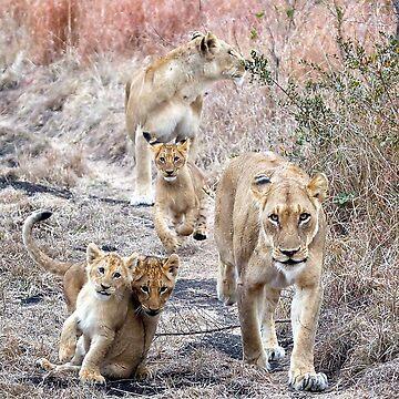 Family Walk by Mytmoss
