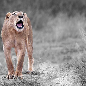 The Roar by Mytmoss