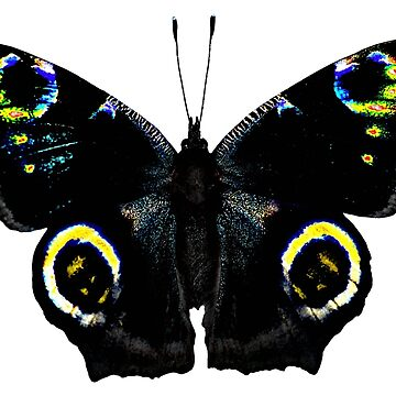 Gothic Butterfly by Orchid-Dawn