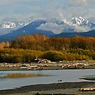 MOUNT ANGELES FROM THE MOUTH OF THE ELWHA  by Elaine Bawden