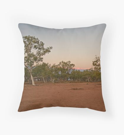 Jervois Station River Bed Throw Pillow